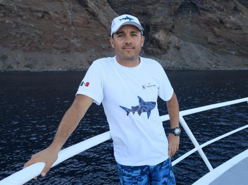 "Mexican biologist Mauricio Hoyos tells EFE during an interview on Nov. 8, 2018, that he has been fascinated by great white sharks since seeing ""Jaws"" at the age of 5, and now dedicates his life to studying them. EFE-EPA/Isabel Reviejo"