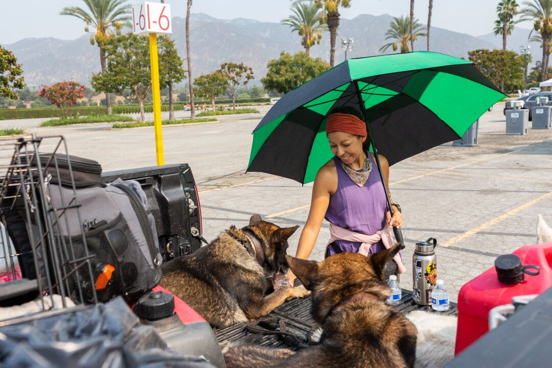 Juanita Aldana gives her dogs water at a Red Cross evacuation site