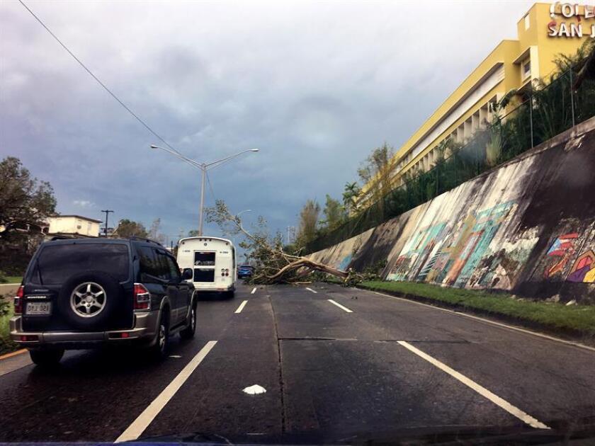 """La Cámara de Comercio del oeste de Puerto Rico pidió hoy al secretario de Transportación y Obras Públics (DTOP), Carlos Contreras, que arregle las carreteras estatales y municipales de dicha parte de la isla que se encuentra, aseguran, en """"malas condiciones"""". EFE/ARCHIVO"""