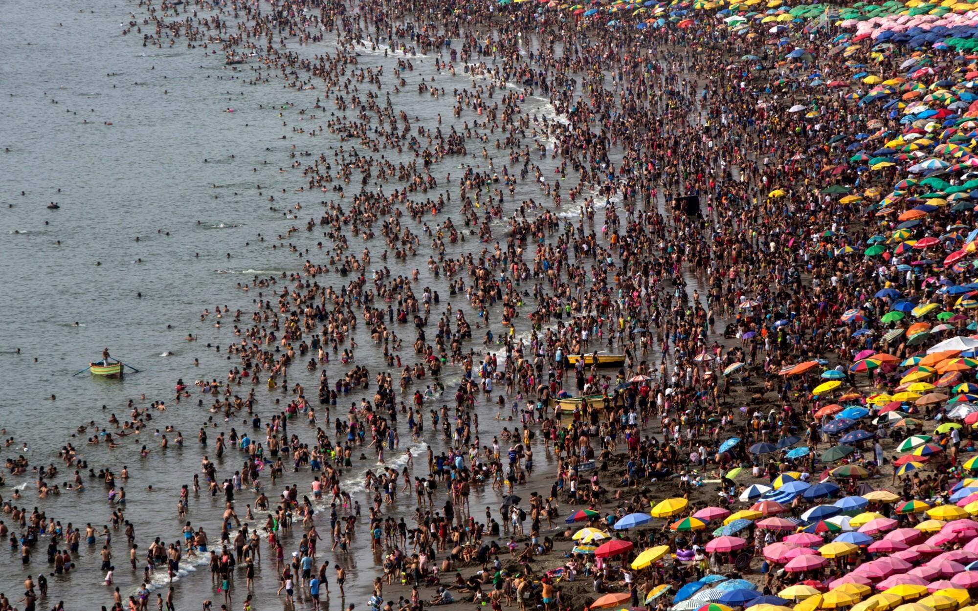 Photos: Birds claim Peru beach emptied by virus outbreak - Los Angeles Times