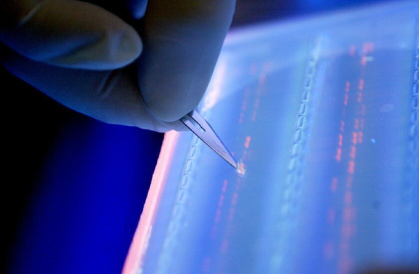 Entire DNA of fetus revealed through risk-free testing