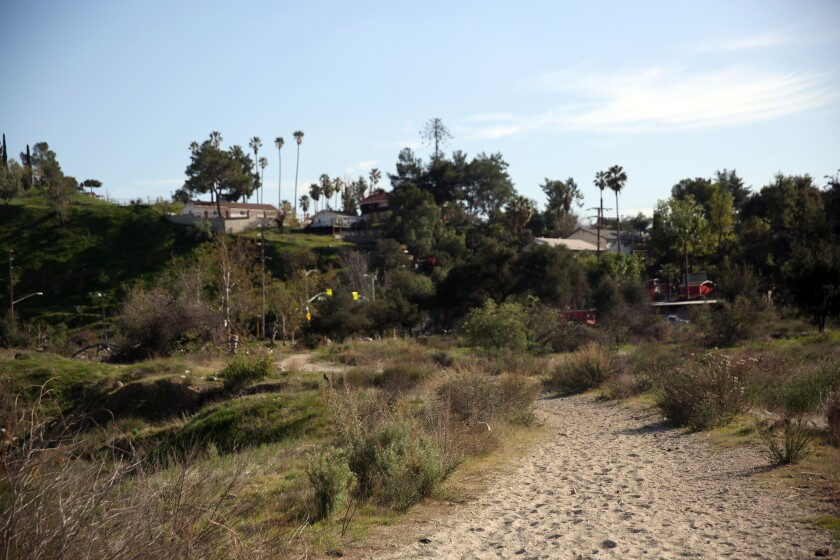 The wide and sandy trail that leads to Tujunga Ponds.