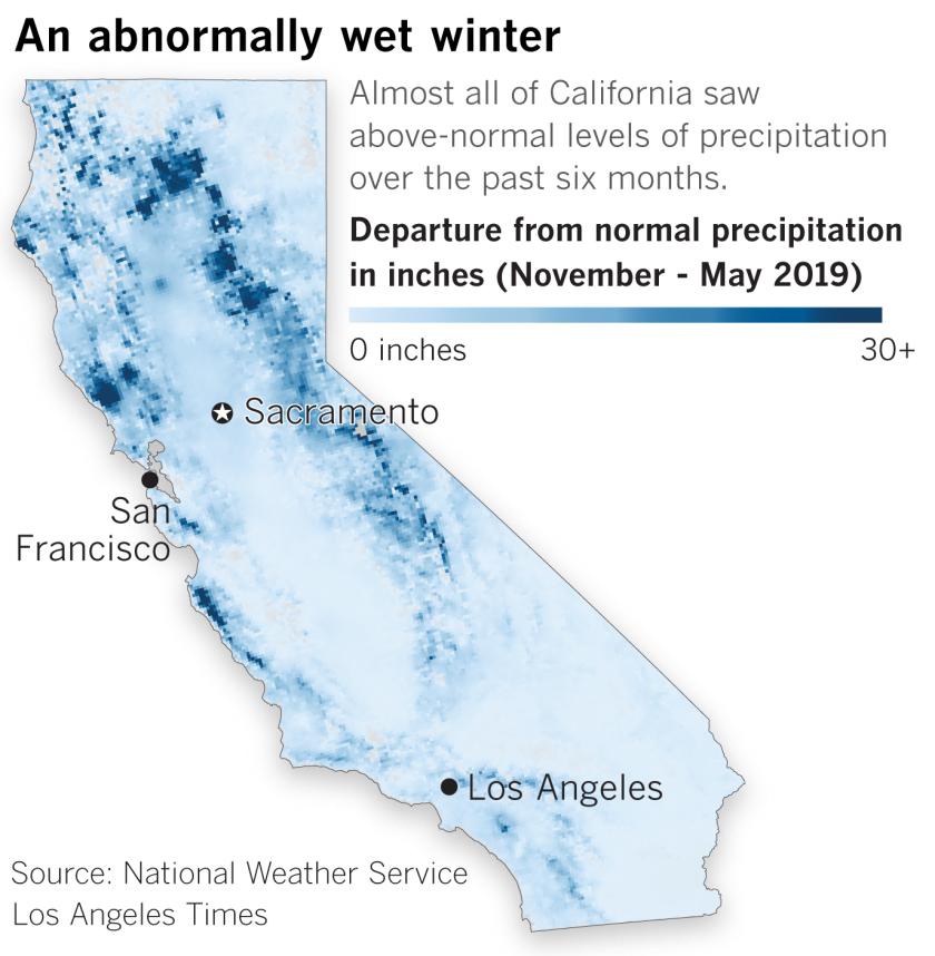 Late-season rains mask looming fire danger as lush plants turn dry