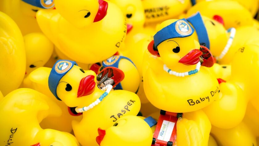 Rubber duckies are dumped off the Huntington Beach Pier to race toward shore during the 26th annual