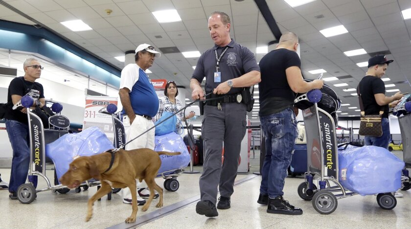 In this photo taken June 30, 2016, Miami-Dade Police officer William Cook, Jr., and his police dog Ringo patrol Miami International Airport in Miami. House and Senate lawmakers announced an agreement on an aviation bill to boost airport security, reduce screening lines and require airlines to refun