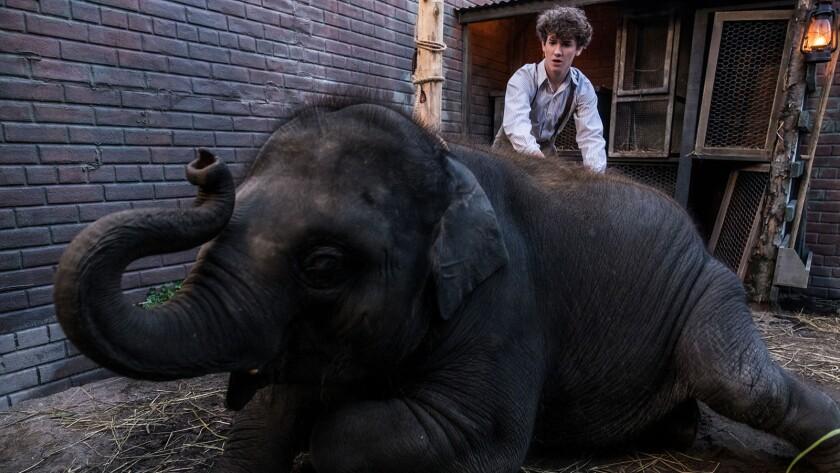 """Art Parkinson in a scene from the movie """"Zoo."""" Credit: Darren Goldstein/DSG Photo/Samuel Goldwyn Fil"""