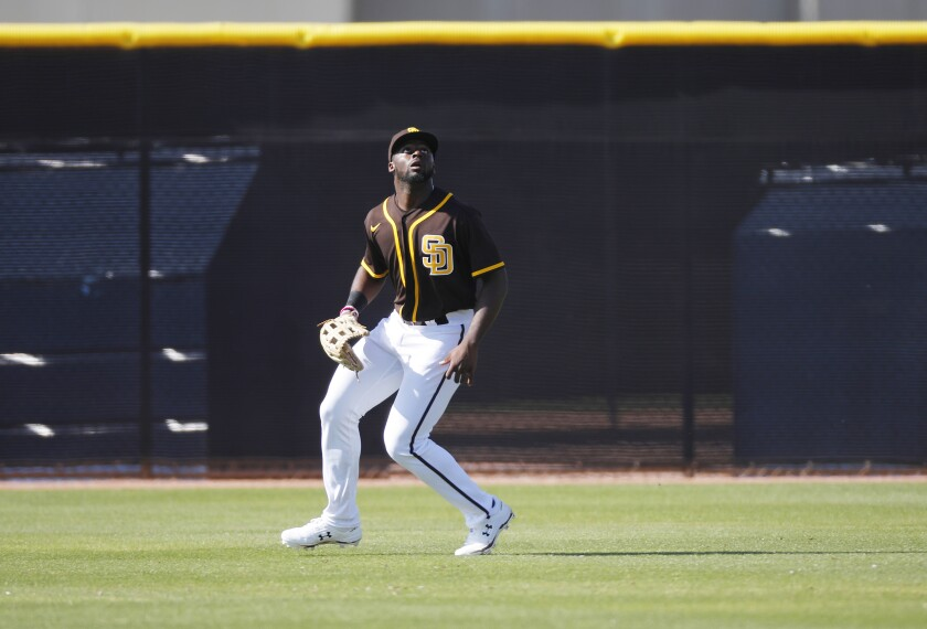 Taylor Trammell tracks a fly ball during a Padres spring training workout.