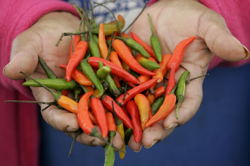 Peppers from the Gardena farmers market are shown. Gardena is one of the oldest farmers market in the Los Angeles area.