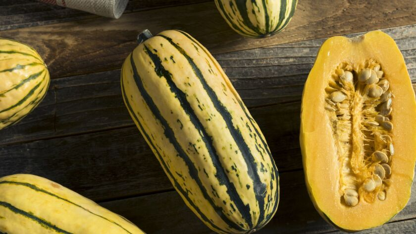 Delicata squash — it's in season now through early winter.