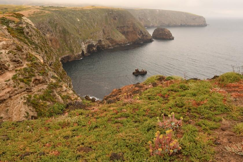 Near Cavern Point on Santa Cruz Island, Channel Islands National Park.