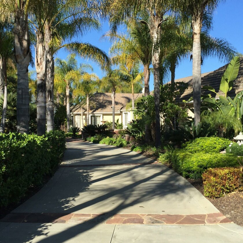 Palm trees line the welcoming entrance to a Fallbrook home included on the Fallbrook AAUW Country Garden Tour. Elizabeth Leader photo