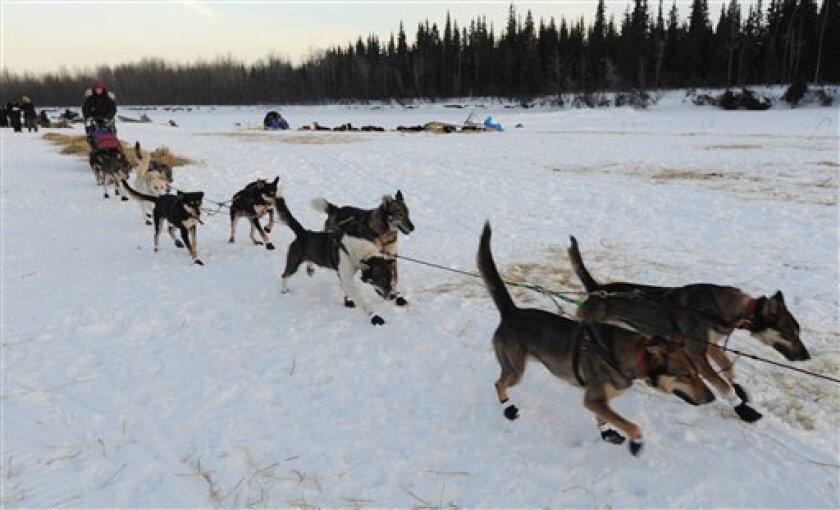 Veteran Iditarod musher Kelley Griffin of Wasilla leaves the Athabaskan village of Nikolai, Alaska, on Tuesday, March 5, 2013. (AP Photo/Bill Roth, Anchorage Daily News)