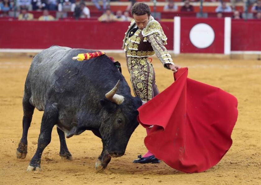 Imagen de archivo del diestro español Antonio Ferrera. EFE/Archivo