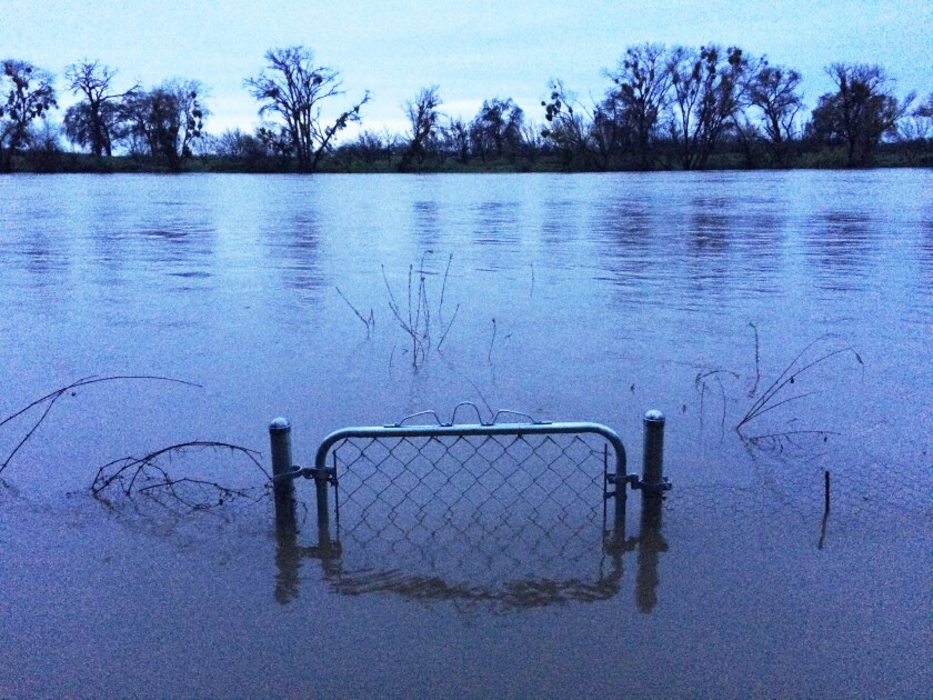 A nearly submerged gate shown Saturday in the backyard of a home on the fast-moving Sacramento River in Verona, about 20 miles north of Sacramento. The homeowner reported that on Sunday, the gate was covered.