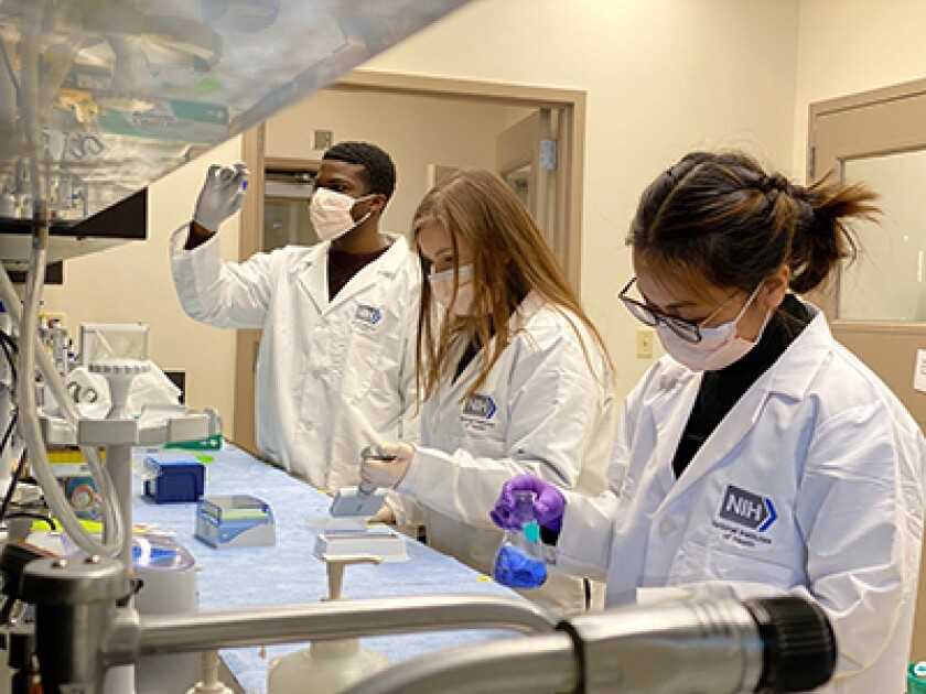 Researchers work in a laboratory
