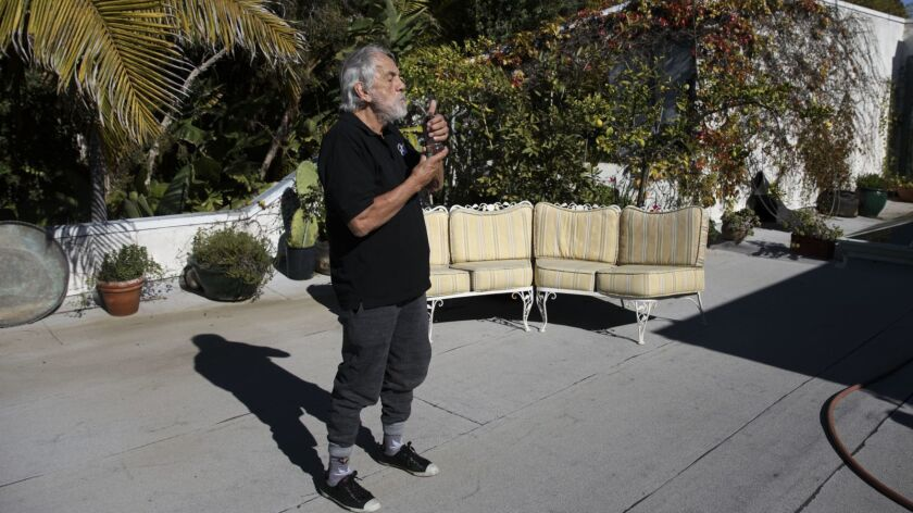Comedian Tommy Chong Portrait At Home