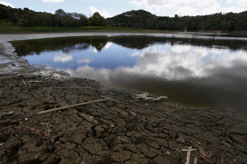 Disminuye la sequía severa en Puerto Rico de 14,67 % a 13,08 %