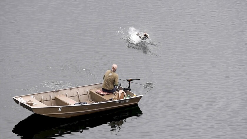 A story published on SDFish.com called into question claims by bass-fishing legend Mike Long, shown snagging a bass April 4 on Lake Poway.
