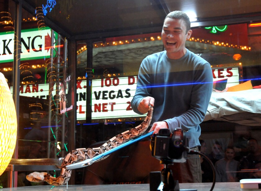 """Renowned animal adventurer and venom expert Donald Schultz prepares for a stunt in 2010 called """"Venom in Vegas"""" outside O'Sheas Casino in Las Vegas. Schultz pleaded guilty Tuesday to one count of violating the Endangered Species Act by offering to sell, and selling, two live desert monitor lizards."""