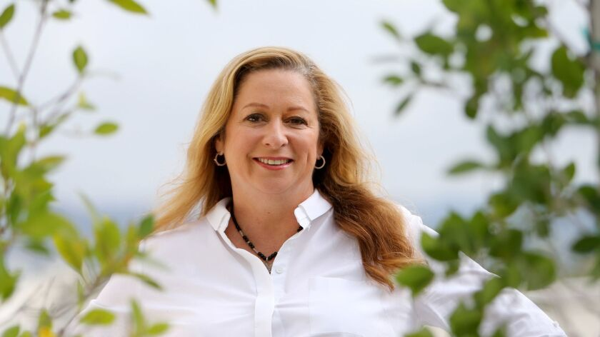 Abigail Disney, the granddaughter of Walt Disney Co. co-founder Roy O. Disney sharply rebuked the most recent pay package for CEO Bob Iger.