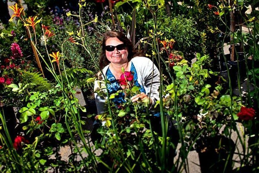 """Diana Rodgers became interested in farmers markets when she read """"Diet for a New America."""""""