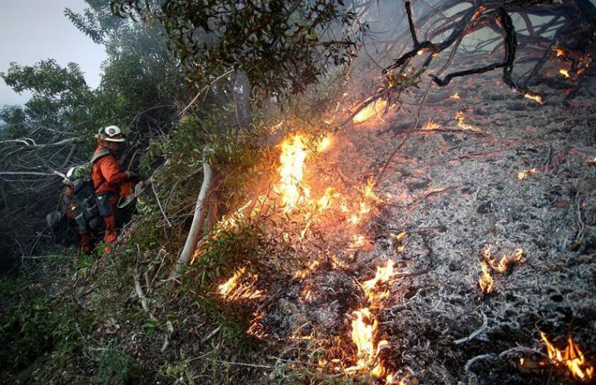 Reclusos bomberos combaten un incendio en Ojai (EE.UU.).EFE/Archivo