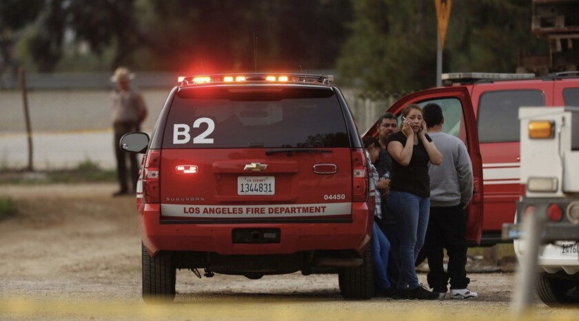 Authorities launched a frantic search Sunday afternoon for a 13-year-old boy who witnesses say fell