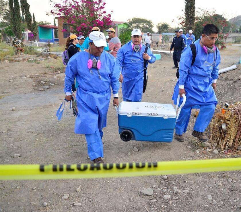 Al menos 163 fosas clandestinas fueron halladas en México desde 2017