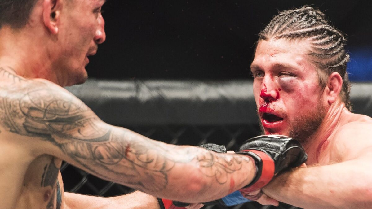 What S Next After Epic Slugfest By Max Holloway And Brian Ortega Set A Ufc Record For Most Significant Strikes Los Angeles Times