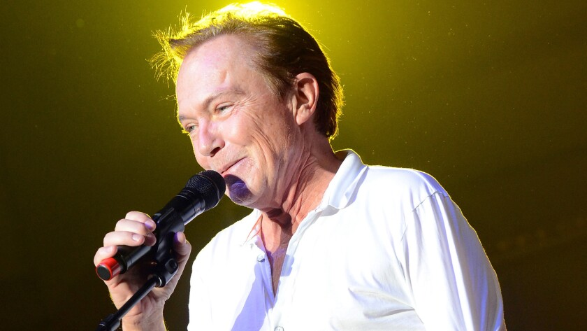 David Cassidy has filed for Chapter 11 bankruptcy in Florida.
