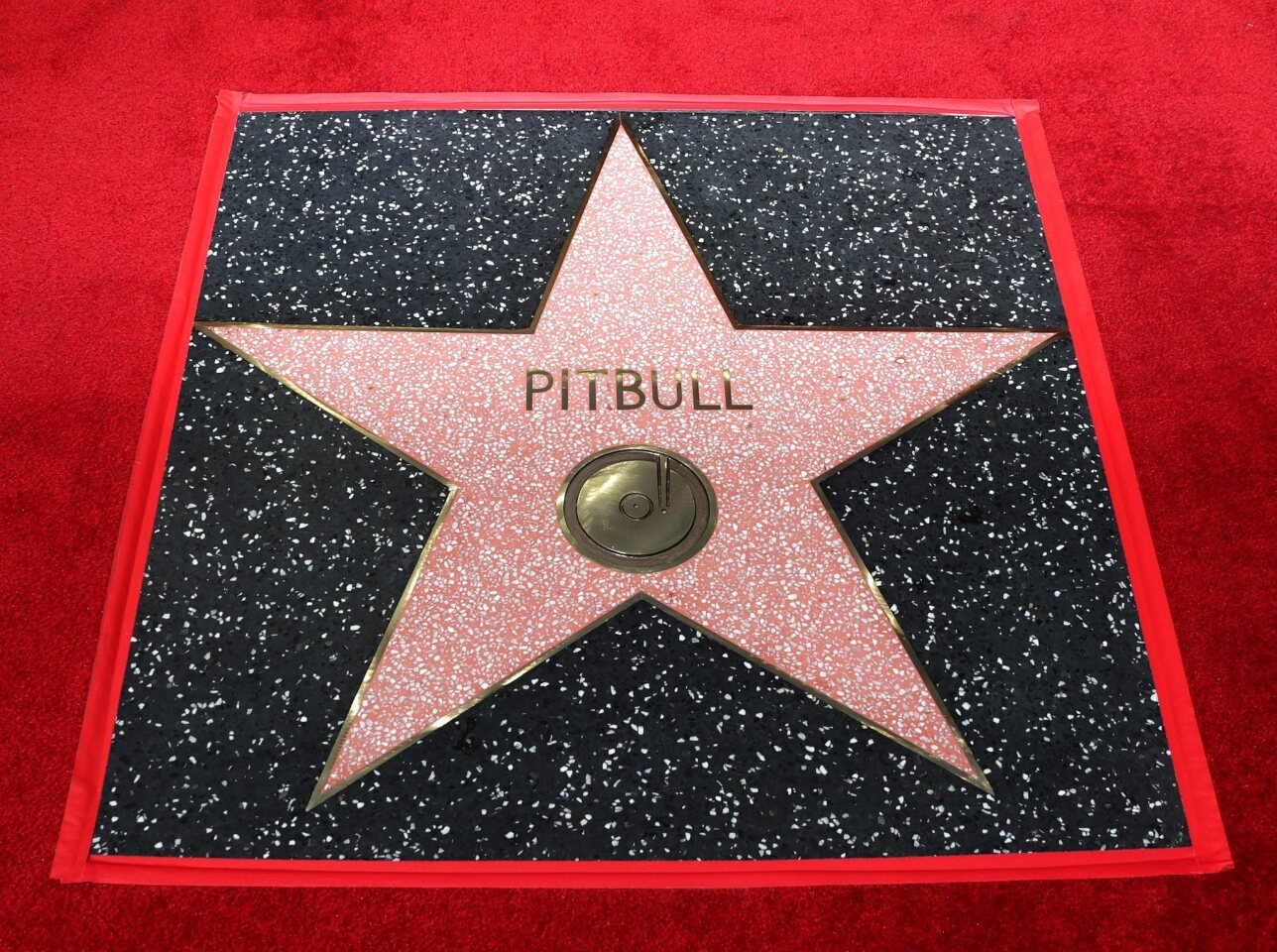 MAN06. Hollywood (United States), 15/07/2016.- The star for Cuban-American singer Pitbull is pictured after a ceremony honoring him on the Hollywood Walk of Fame, in Hollywood, California, USA, 15 July 2016. Pitbull received the 2,584th star in the Recording category. (Estados Unidos) EFE/EPA/MIKE NELSON ** Usable by HOY and SD Only **