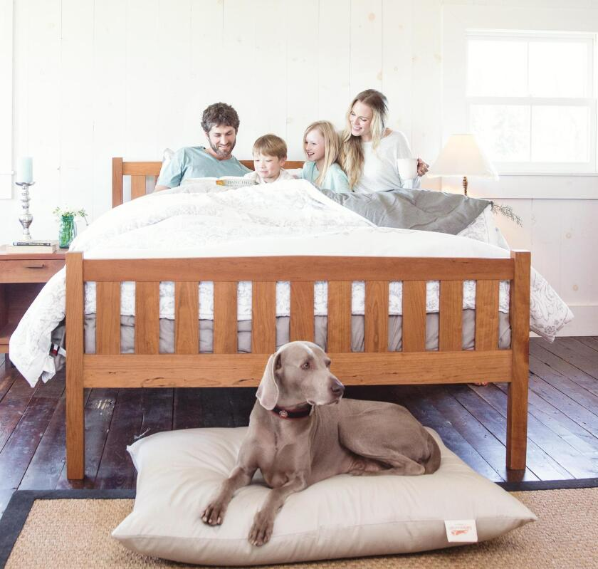 The Futon Shop sells not only futons, but sofa beds, pillows, mattresses, platform beds, and mattress pads; all of it non-toxic and chemical free.