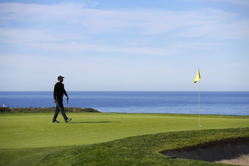 Tigers Woods walks on the green of the 14th hole on Torrey Pines south course during a practice round for the Farmers Insurance Open in San Diego on Jan. 22, 2019.