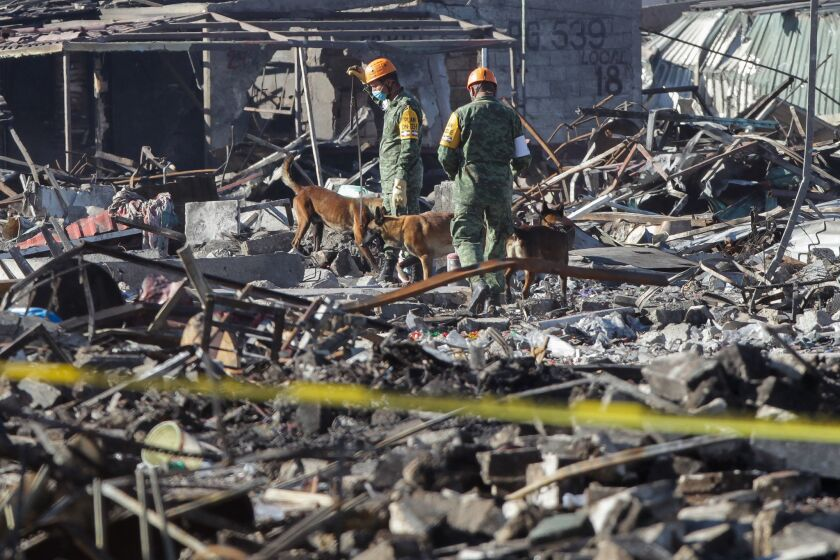 Personal del ejercito mexicano realiza labores de búsqueda y rescate con perros entrenados en la zona donde se registró la explosión en el Mercado de Pirotecnia de San Pablito, en el municipio mexicano de Tultepec .