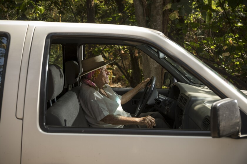 Diana Kennedy at the wheel of her standard-transmission Nissan pickup truck, near her home in Mexico.