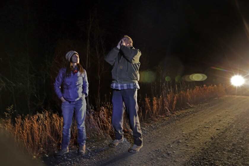 Wolf expert Carter Niemeyer, right, with biologist and lawyer Amaroq Weiss, tries to call wolves in the Colville National Forest in Washington state.