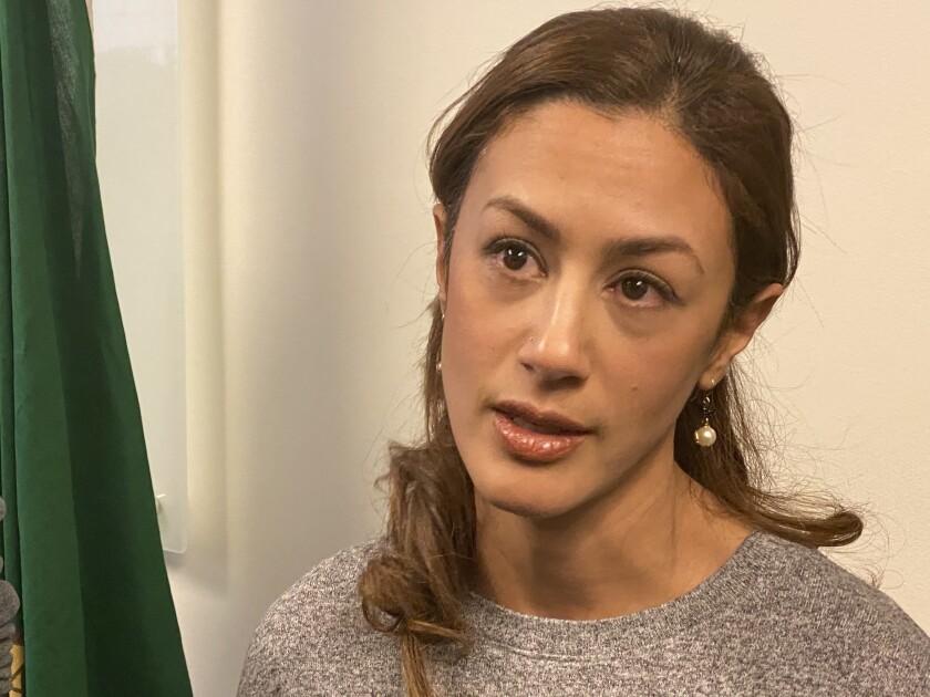 Iranian Americans describe ordeal of detention at U.S.-Canada border