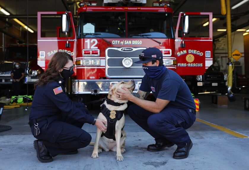 San Diego Fire-Rescue chaplain Betsy Salzman visits Station 12 with Genoa, a 2-year-old golden retriever.