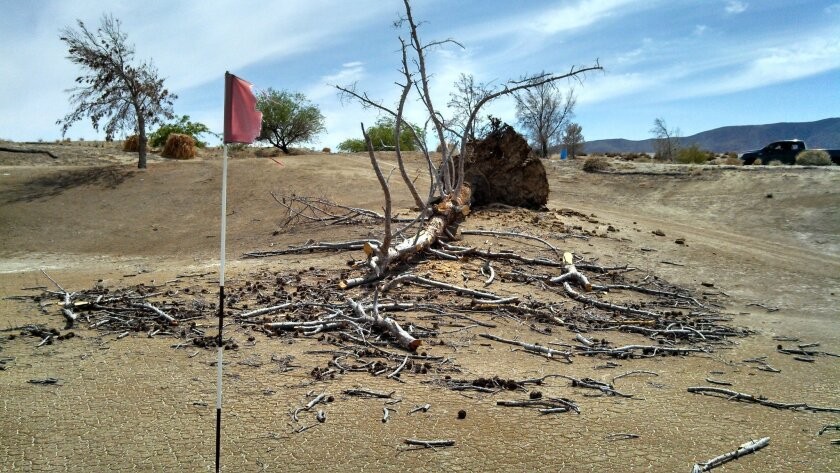 The once lush Rams Hill golf course in Borrego Springs is now waterless and brown
