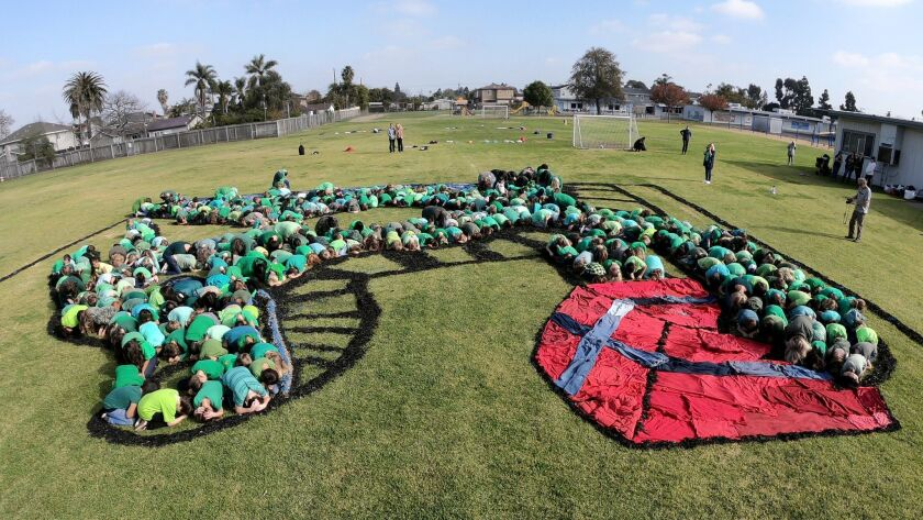 Costa Mesa students create living 'Art for the Sky' - Los Angeles Times