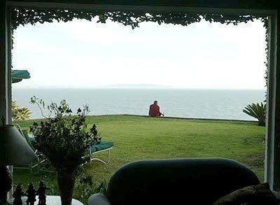 A peaceful setting