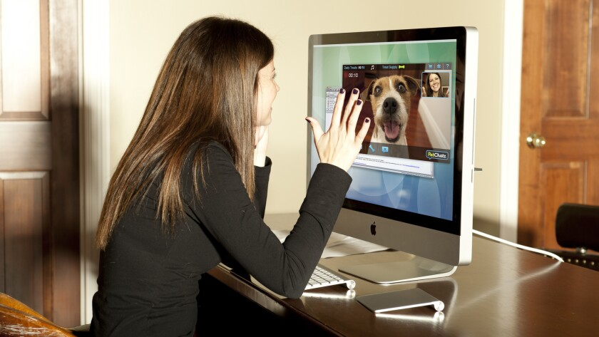 This isn't just a camera. PetChatz HD gives you two-way video chat, the ability to hand out treats, aromatherapy, sound and motion detection and you can even get a button that your pet can use to start a call. Training for button-use not included. $379.99. Petchatz.com