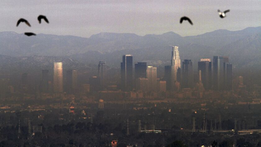 A view of downtown Los Angeles from Hilltop Park in Long Beach, Calif. during the Colby fire on January 18, 2014.