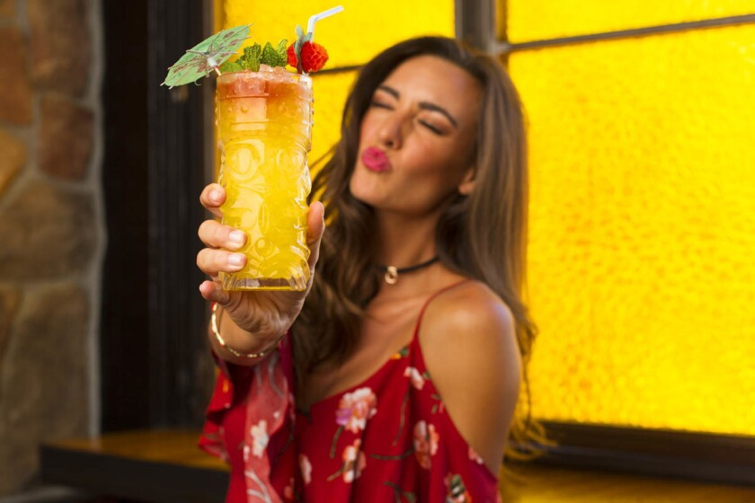 Cheers! According to a new study from UCSD, drinking moderate to heavy amounts of alcohol could help keep dementia away. (K.C. Alfred/Union-Tribune)