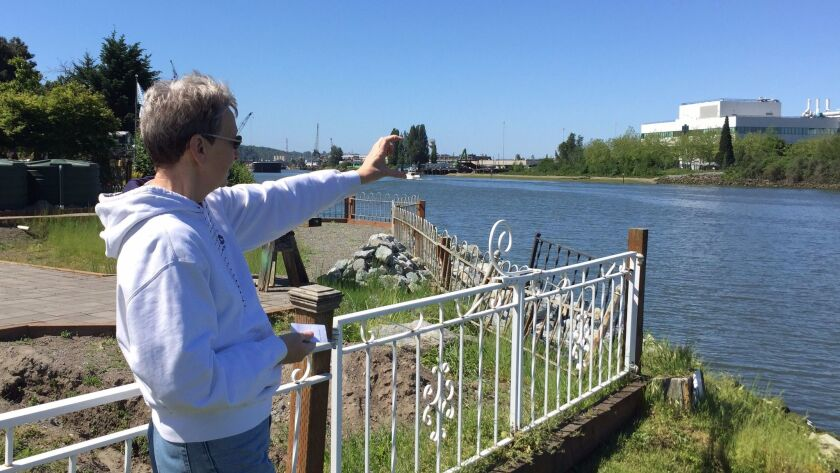 Dagmar Cronn has seen increasing erosion of her property on the Duwamish River. Her house is directl