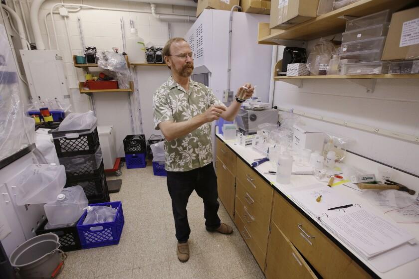 Scientist Ken Buesseler measures radioactivity in seawater collected by citizen groups.
