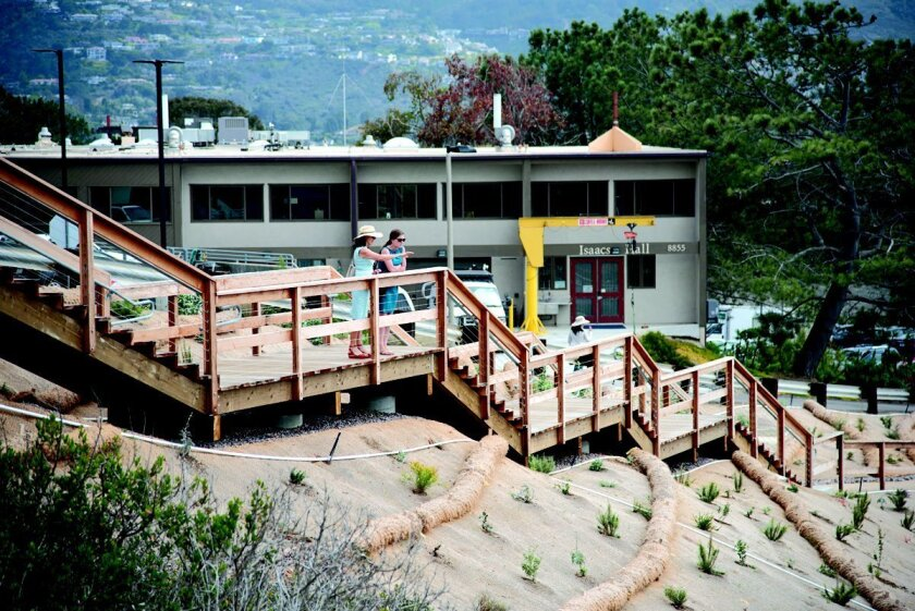 The latest path in the Scripps Coastal Meander Trail connects two overlooks via a boardwalk more than 150 feet above the beach, as part of a network of paths spanning the ocean-view side of Scripps Institute of Oceanography.