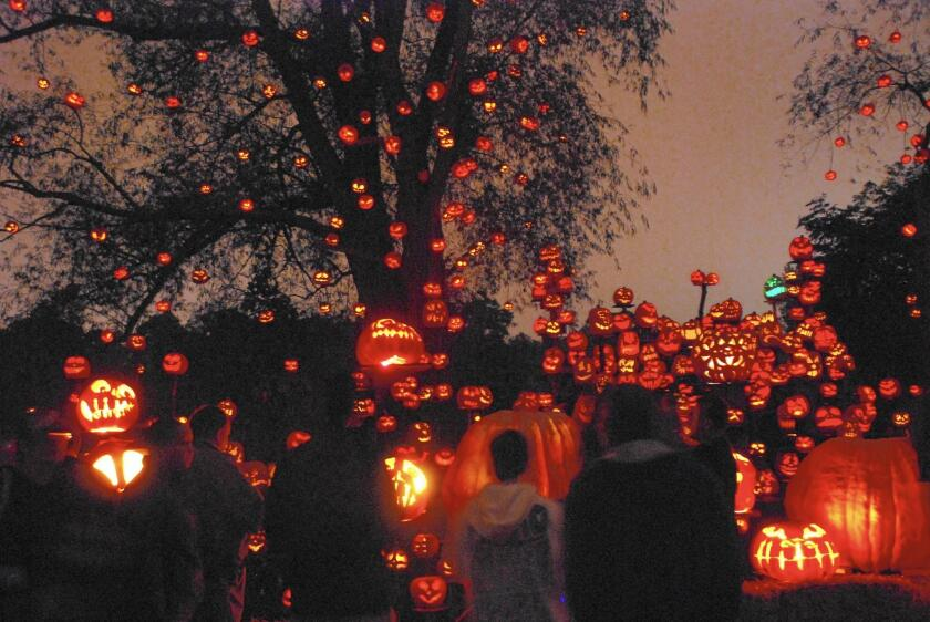 Some 5,000 carved pumpkins are stars of the annual Jack-O-Lantern Spectacular, an illuminated, nighttime event held at the Roger Williams Park Zoo in Providence, R.I.