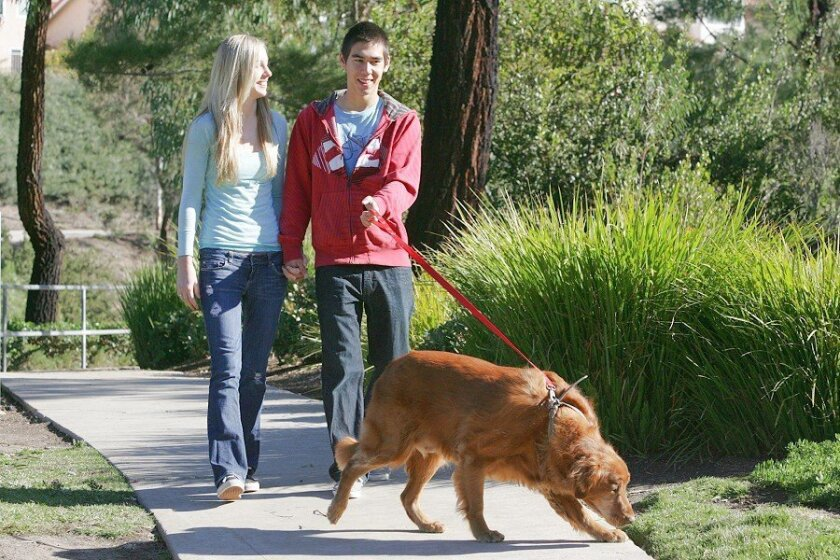 Claire Cordua, now almost completely recovered from her stroke, and boyfriend Chris Price walked Price's dog, Bucky, near their Rancho Peñasquitos homes.