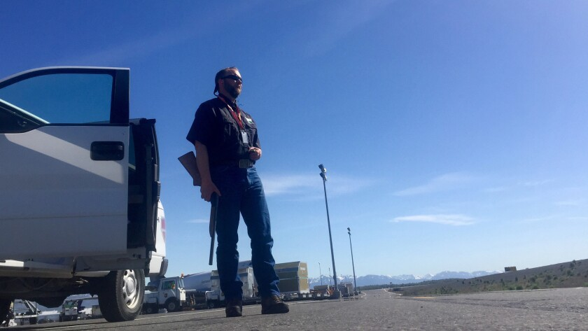 Wildlife biologist Spencer Nelsen patrols Ted Stevens Anchorage International Airport. There have been two aircraft collisions with bald eagles during his three years here, he said. One caused more than $1 million in damage to a 747 in 2015.